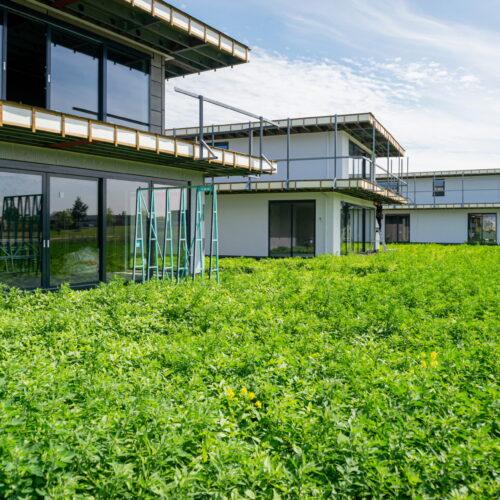 12 Villa's Dronten